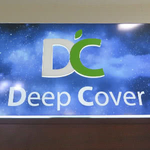 Mobile accessories «Deep Cover Store»